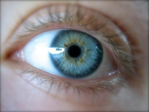 Íris é a parte colorida dos olhos e a pupila é a parte preta