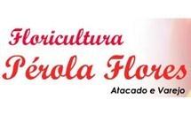 Floricultura Pérola Flores em Uberaba