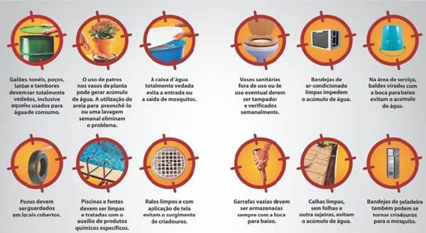 Saiba onde são os locais preferidos do mosquito transmissor - Imagem Divulgação Prefeitura Municipal de Uberaba